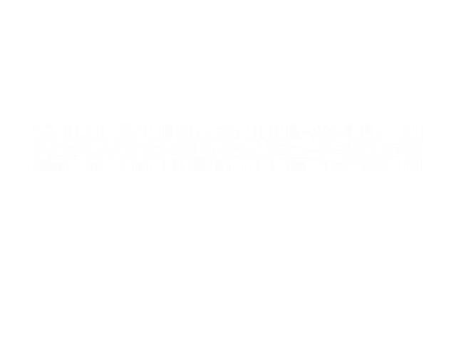 productiontype logo blanc 2